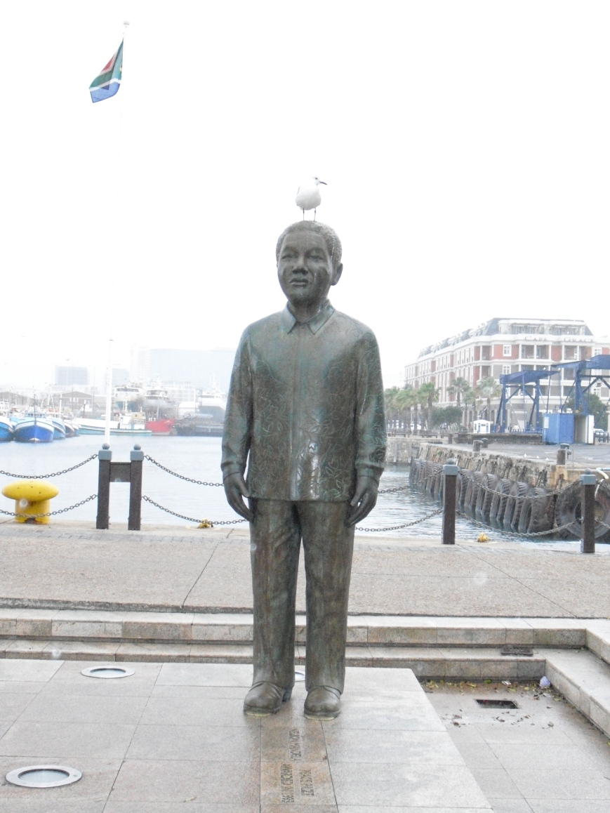 Mandela and the Seagull